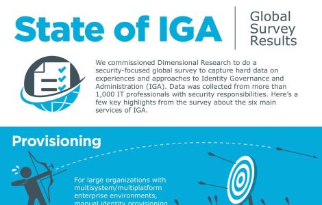 State of IGA Infographic